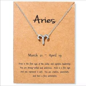 Aries ♈️ New Zodiac Sign Necklace Silver Horoscope